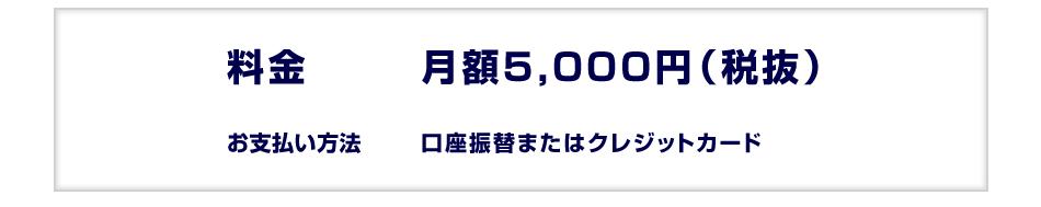 月額5,000円(税抜)